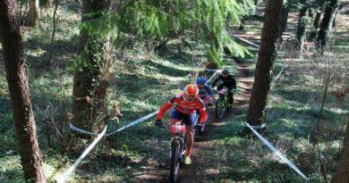 Tutto quello che c'è da sapere sul percorso del Trofeo Monte Sant'Angelo di mountain bike