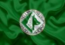 COMUNICATO STAMPA: Precisazioni dell'US Avellino in merito al blitz della G.F.