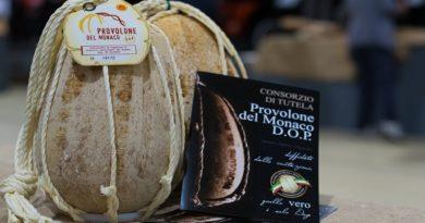 Provolone del Monaco Dop, sabato si assegna il premio per la migliore stagionatura oltre 12 mesi